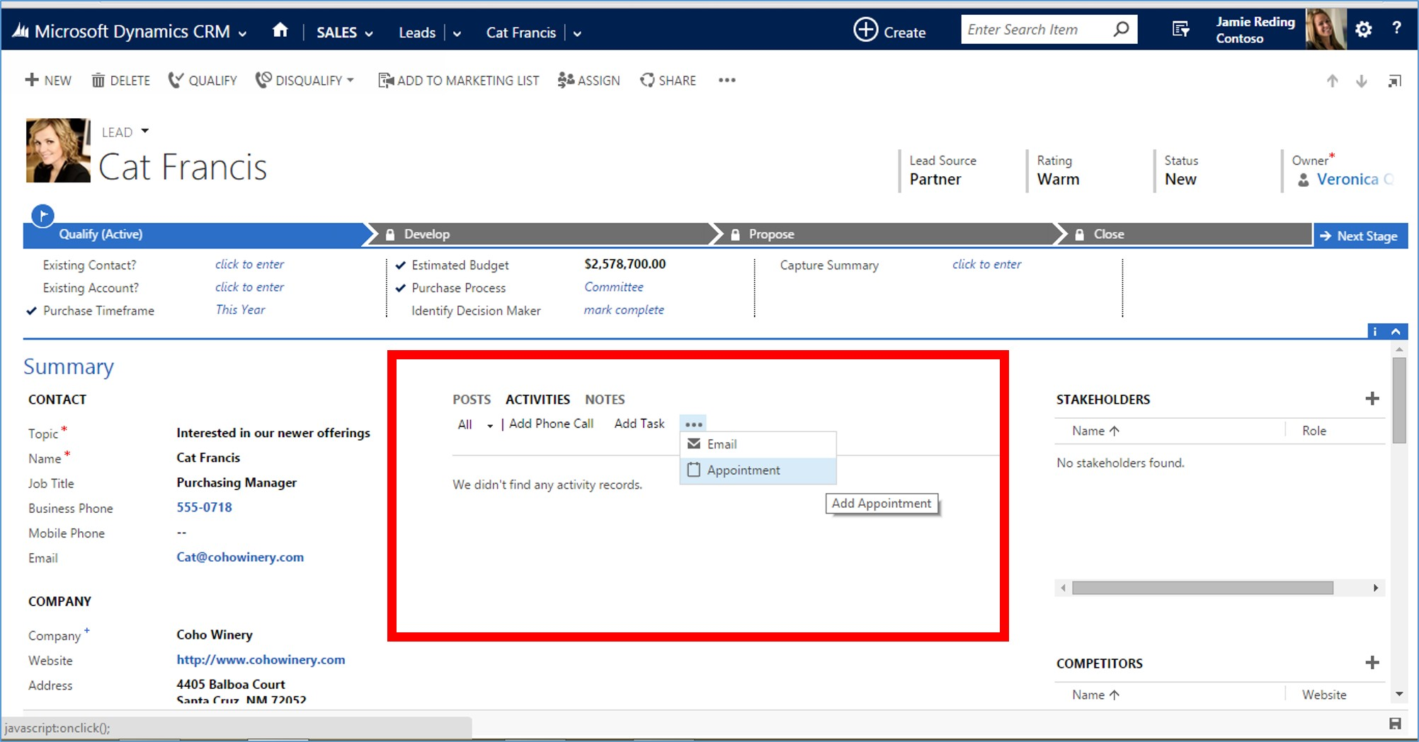 Microsoft Dynamics CRM 2015 Activity Records part 2 image3